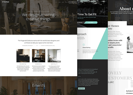 wordpress theme memberships high end wordpress themes