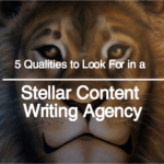 Top Qualities to Look For in a Great Content Writing Agency